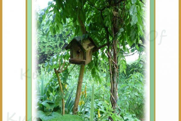 Tinyhouse im Grünen