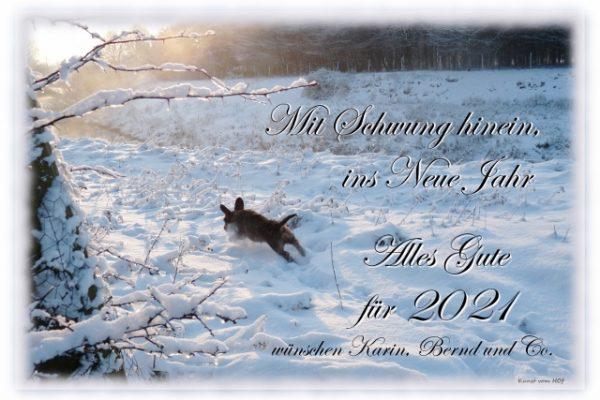 Ein neues Jahr beginnt: 2021